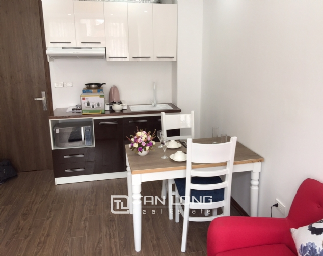 1 bedroom apartment for rent on Alley 41, Linh Lang street 2