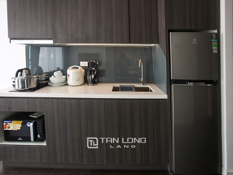 Bright new apartment for rent in Tay ho street, Tay ho district 1