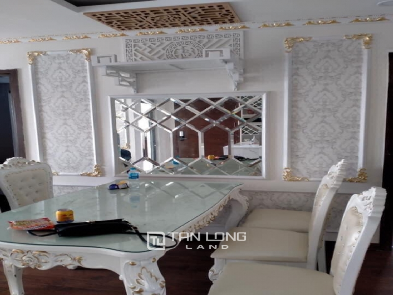 MODERN APARTMENT IN AN BINH CITY FOR RENT 5