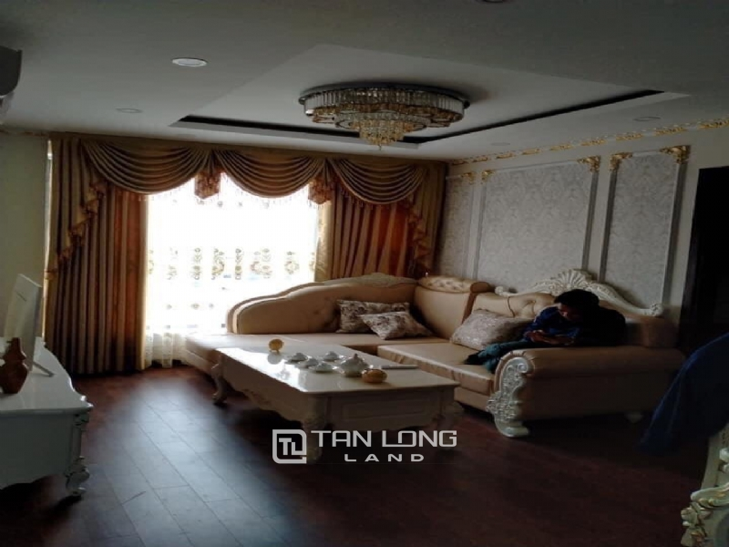 MODERN APARTMENT IN AN BINH CITY FOR RENT 6