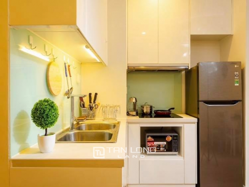 Nice 2 bedroom apartment for rent in P1, Times City Park Hill 6