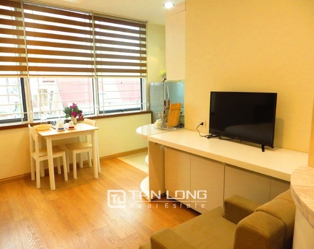 Nice studio apartment for rent in Lieu Giai Street, an area of 50m2 1