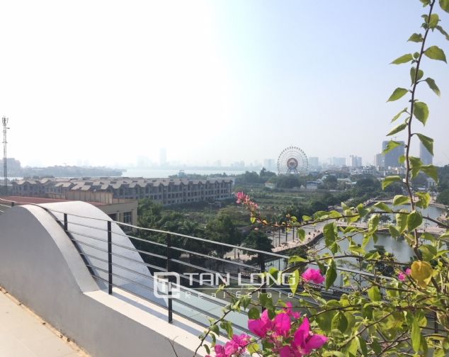 Top-floor apartment for rent on Trinh Cong Son street 2