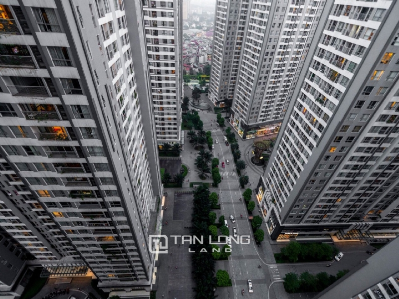 Two bedroom apartment for rent in P2 Building, Times City 8