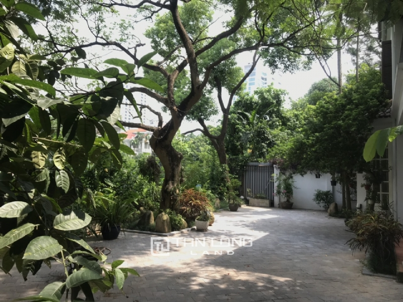 Villas for rent in Dang Thai Mai street, Tay ho district 21
